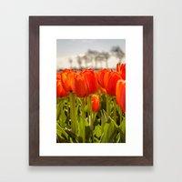 Tulips standing tall Framed Art Print