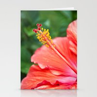 Tropical Bloom Stationery Cards