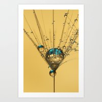 Solitary Sparkles Art Print