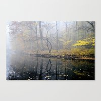 mist on the river Canvas Print
