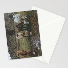 Miniature Donkeys Stationery Cards
