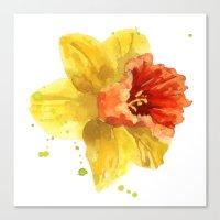 Springtime, flowers, flower paintings, flower clocks, spring, easter, daffodil watercolors Canvas Print