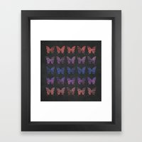 Butterfly Exhibition  Framed Art Print