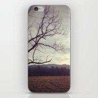 Golden Mountains iPhone & iPod Skin