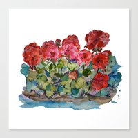 Red Geraniums painting Canvas Print