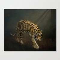 The Night Prowler Canvas Print