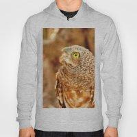 OWL Hoody