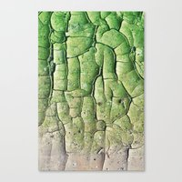 Peeling Green Canvas Print