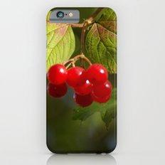 Very Berry iPhone 6 Slim Case