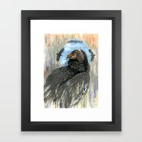 California Condor Framed Art Print