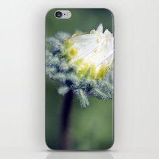 Open iPhone & iPod Skin