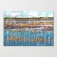 Vacant Land, Everglades, II Canvas Print