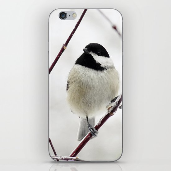 Chicka Chickadee iPhone & iPod Skin