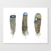 Pheasant Feathers Set Canvas Print