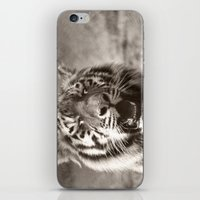 Tiger Cub 1 iPhone & iPod Skin