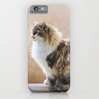 Cat On A Rail iPhone 6 Slim Case