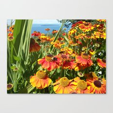 Sweet as a Bee and Daisies Canvas Print