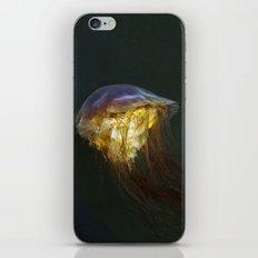 Jellyfish2 iPhone & iPod Skin