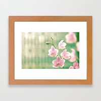 Orchid Ⅱ Framed Art Print