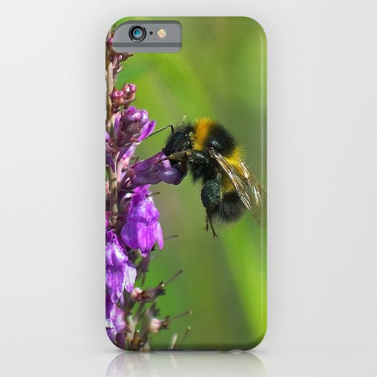 Bee iPhone & iPod Case