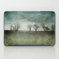 Onondaga Lake Park - Susan Weller iPad Case
