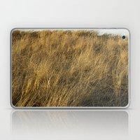 Montauk Grass Sand Dunes Laptop & iPad Skin
