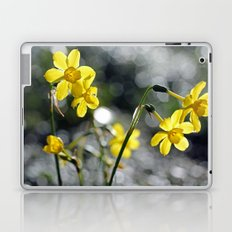 Sunny Dancers Laptop & iPad Skin