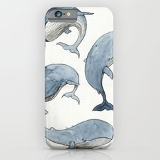 Dancing Whales iPhone 6 Slim Case