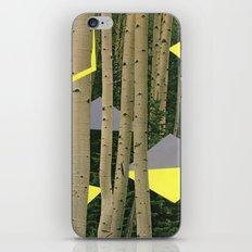 Idyllwild #2 iPhone & iPod Skin