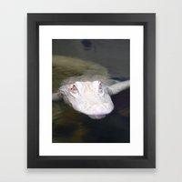 Ghost Gator Framed Art Print