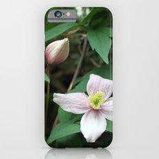 summer pink flower on vine. backyard floral photography. Slim Case iPhone 6s