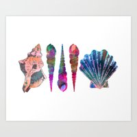 SEASHELL LOVE IV Art Print