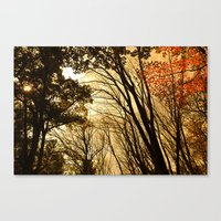 Autumn Boughs Canvas Print
