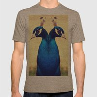 Peacock Mens Fitted Tee Tri-Coffee SMALL