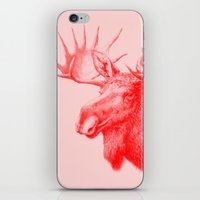 Moose Red iPhone & iPod Skin