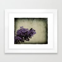 Crow's View Framed Art Print