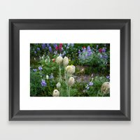 Washington Flora Framed Art Print