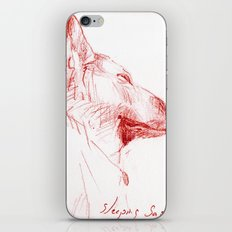 Shepherd Dreams iPhone & iPod Skin