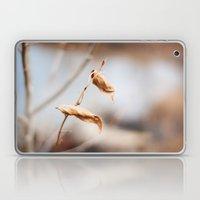 The Still Of Winter Laptop & iPad Skin