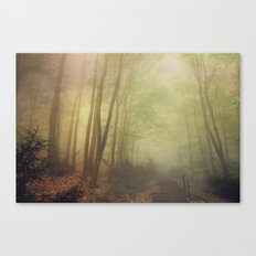 mellow morning Canvas Print