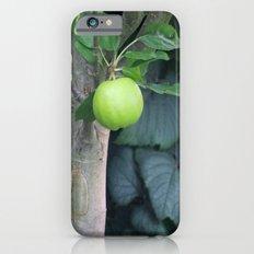 APPLE iPhone 6s Slim Case