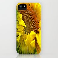 Unfolding Giant Sunflowe… iPhone (5, 5s) Slim Case