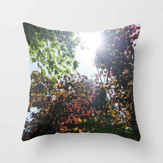 Be The Change You Wish To See Throw Pillow