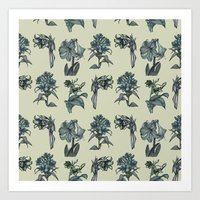Botanical Florals | Vint… Art Print