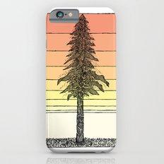 Coastal Redwood Sunset S… iPhone 6 Slim Case