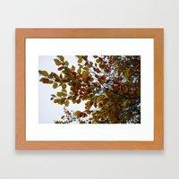 Autumn Patterns #2 Framed Art Print