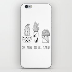 suc where you are planted iPhone & iPod Skin