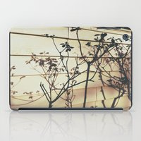 Branches Reflections iPad Case