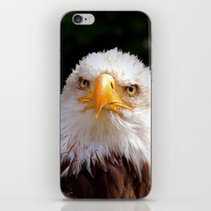 MM – YOU GOT THE LOOK iPhone & iPod Skin