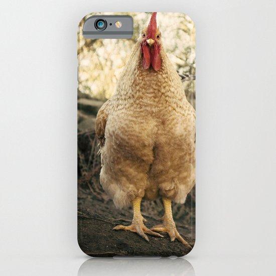 gallo chulo iPhone & iPod Case